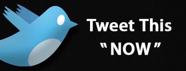 """Ставим кнопку """"Twitter This"""" в WordPress"""