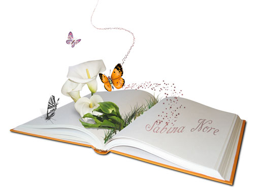 гимны дизайнеров, дизайн, Я, книга, волщебная книга, красочная книга, загадки, записи