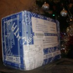 Новогодний подарок от rookee